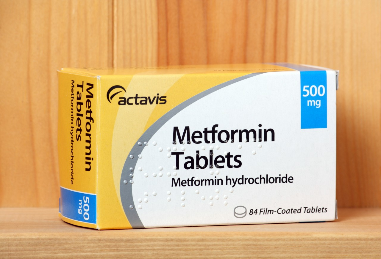 Metformin Use in Type 2 Diabetic Chronic Kidney Disease Patients May Increase Mortality Risk