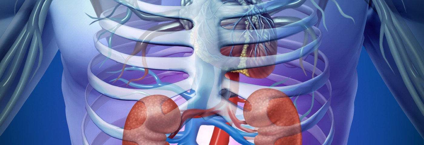 Poor Kidney Function And Immunosuppressant Drugs Increase Cancer Risk