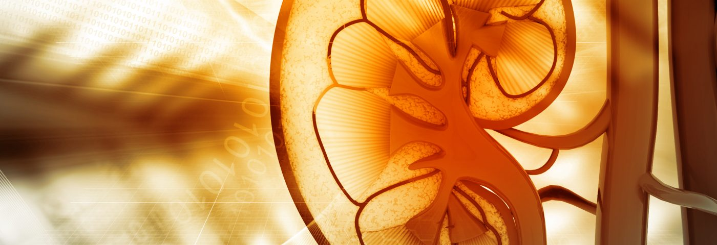 Compound Developed to Battle Kidney Disease in Diabetic Patients