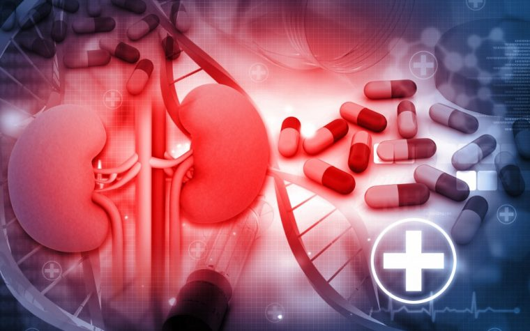 End-Stage Renal Disease Therapeutic Tenapanor Does Well in Phase 3 Clinical Trial